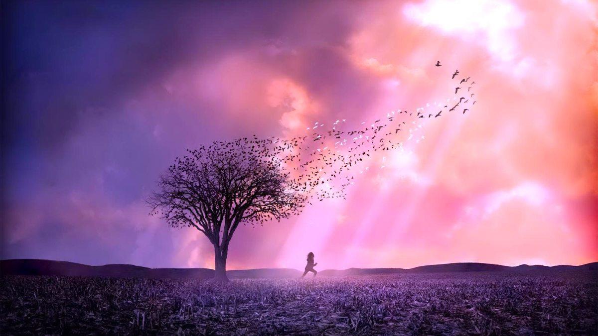 Um Olhar do Paraíso - a perda de uma filha assassinada