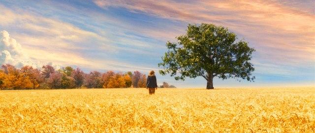 Um Olhar do Paraíso - Blog de psicologia Melkberg - fase - filha - perda - Susie - vida