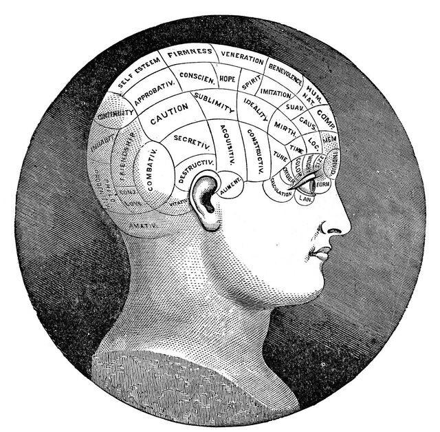 O que é saúde mental? Saiba 16 medidas para cuidar melhor de sua mente - blog de psicologia Melkberg - saúde mental - melhor - vida - mente - problemas - humor - cérebro - ajuda - estresse