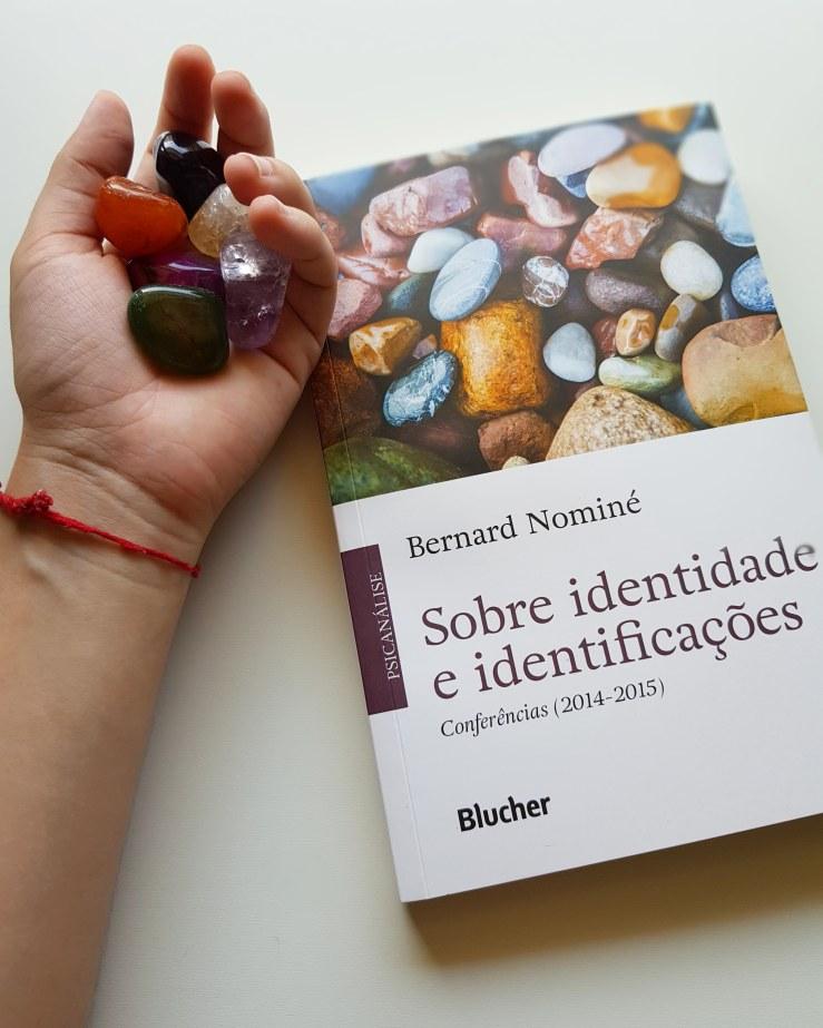 Sobre Identidade e Identificações | Psicanálise, Teorias e Gênero - blog de psicologia Melkberg - Sobre Identidade e Identificações - Bernard Nominé - identificação - identidade - outro - Lacan - Freud - gênero - desejo - teorias - livro - identificações - Psicanálise - editora Blucher