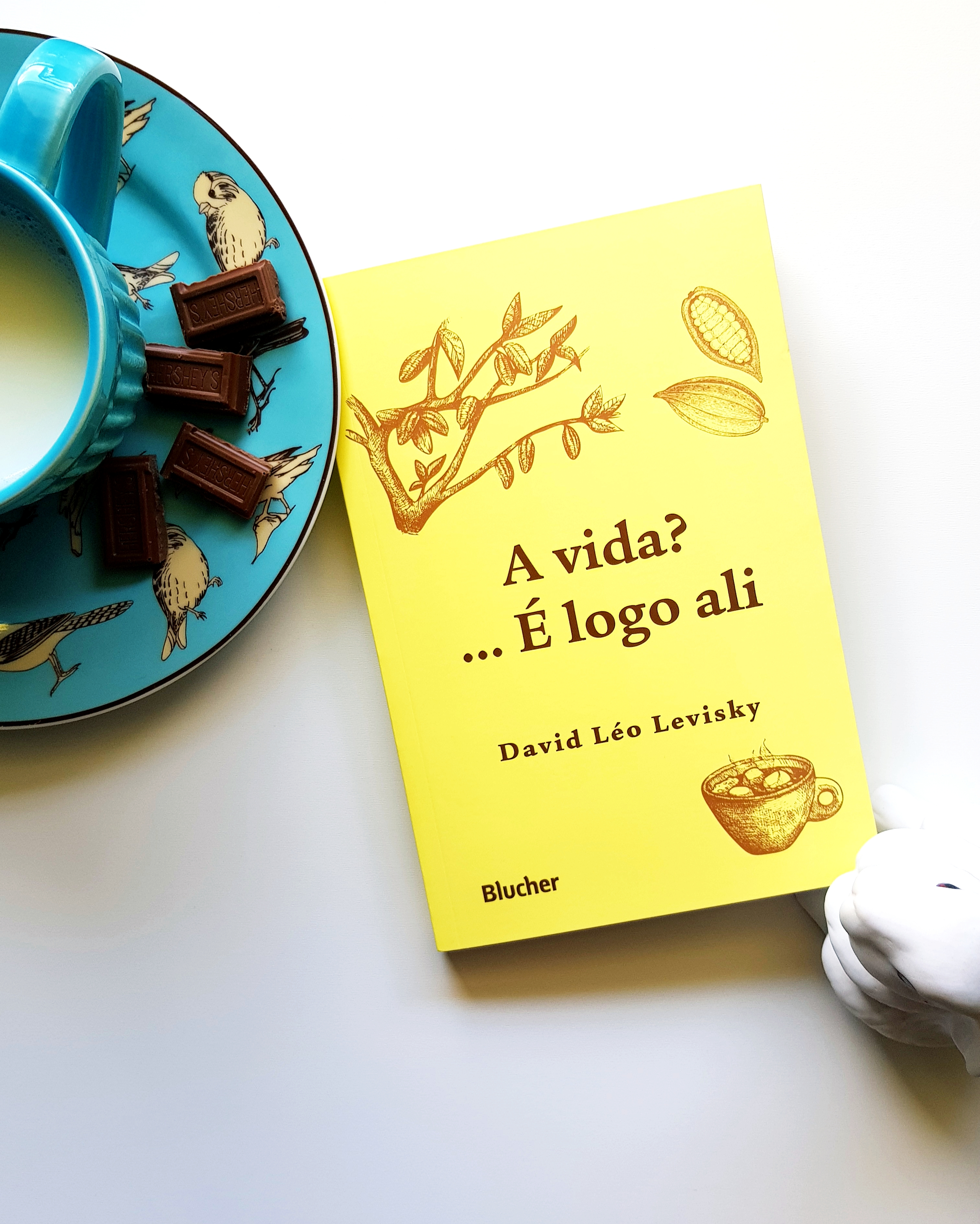 Livro de David Léo Levisky: A Vida?... É Logo Ali - blog de psicologia Melkberg - David Léo Levisky - a vida?... é logo ali - Lina - Gabriela - família - outro - filhos - história - chocolate - livro - cuidados - mulheres