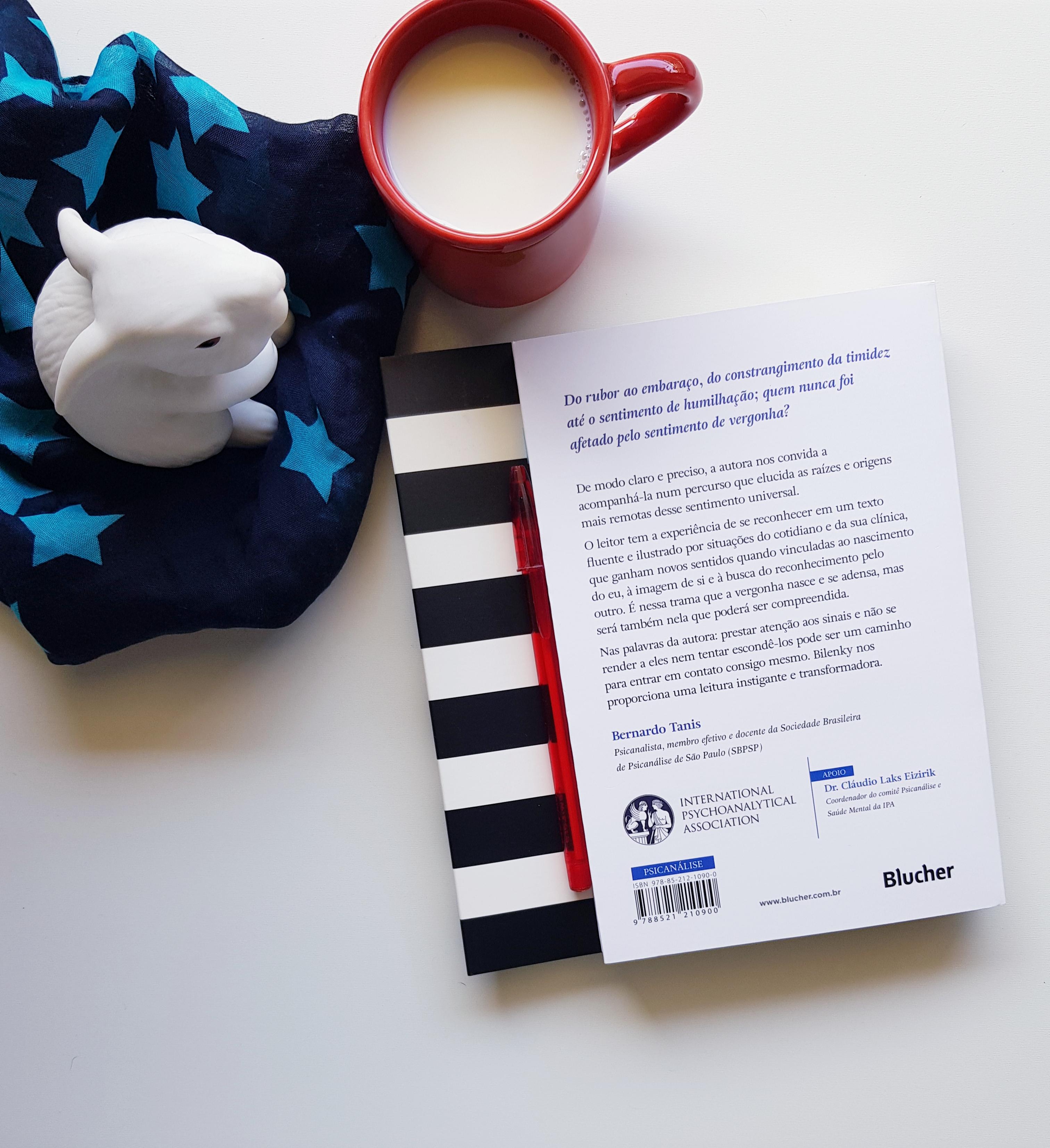 Livro De Psicanálise: Vergonha – Série O Que Fazer? - blog de psicologia Melkberg - autora - livro - psicanálise - sentimento - vergonha - vergonha série o que fazer