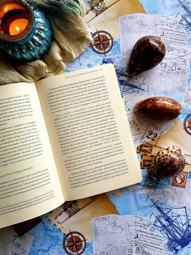 Psicanálise: O Tempo E Os Medos - A Parábola Das Estátuas Pensantes - blog de psicologia Melkberg - o tempo e os medos - livro - psicanálise - envelhecimento - juventude - morte - Maria Silivia Bolguese - beleza - narcisismo - autora