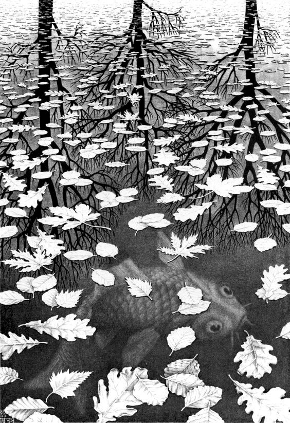 Ansiedade E Medo - blog de psicologia Melkberg - medo - ansiedade - vida - morte - perigo - mente - futuro
